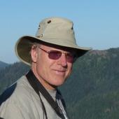 Image of William Ripple